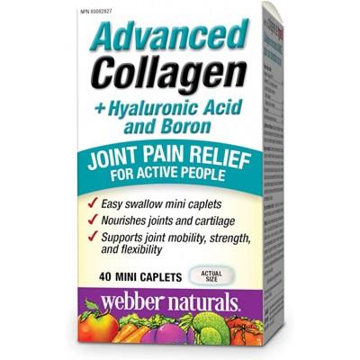 Webber Naturals Advanced Collagen + HA + Boron 40 capl