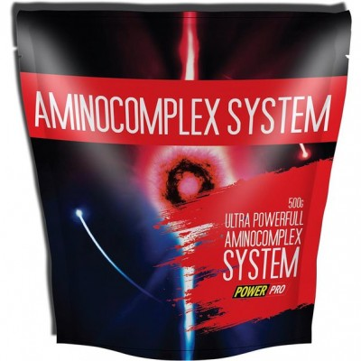 Power Pro AminoComplex System 500 g