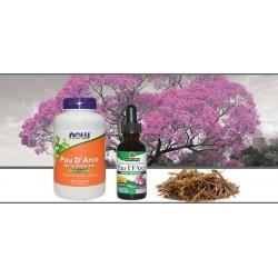 Pau D`Arco или экстракт муравьиного дерева - польза для вашего иммунитета